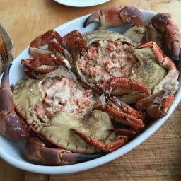 Bou de Mar – der Taschenkrebs
