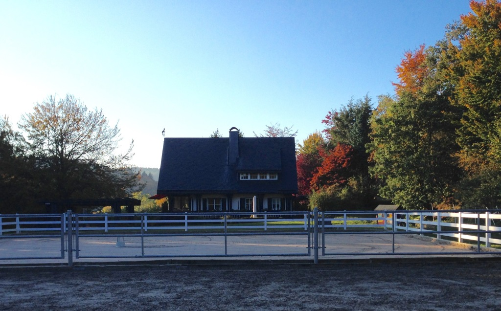 Das Jagdhaus mit der Pferdekoppel