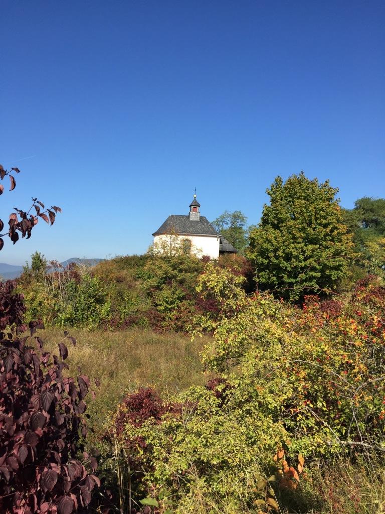 Der Hohlweg von Ilbesheim zur Kleinen Kalmit