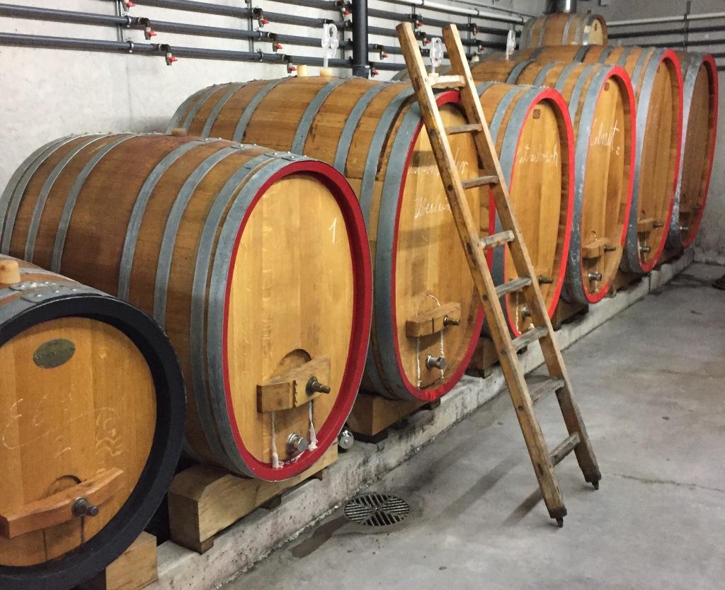 Der Weinkeller im Weingut Leiner
