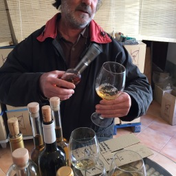 Lieblingswein: Malvasía von Tomeu Isern