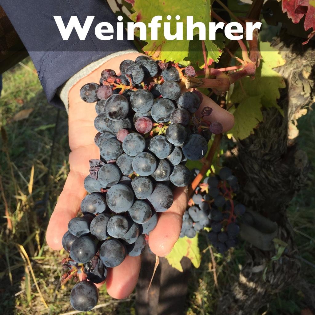 Mallorca Weinführer